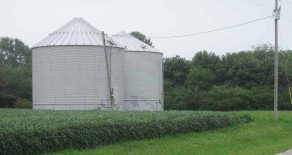 Grant Twp Grain Bins